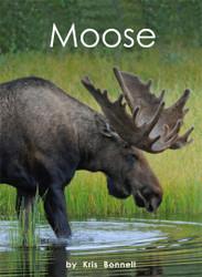 Moose - Level I/14
