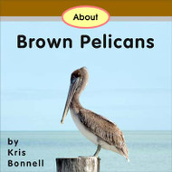 About Brown Pelicans - Level D/5