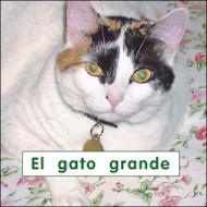 El gato grande - Level B/2