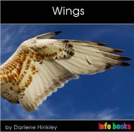 Wings - Level B/2