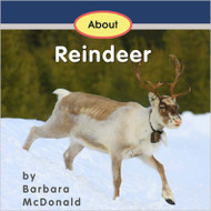 About Reindeer - Level F/9