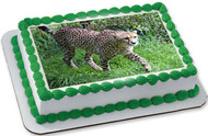 Awesome Cheetah - Edible Cake Topper OR Cupcake Topper, Decor