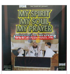 Michoel Streicher - My Spirit My Soul -- All Hebrew