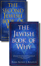 Jewish Book Of Why Gift Set