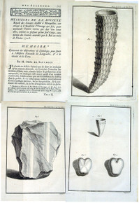 Rare Paleontology book, Sauvages de Lacroix, François Boissier de, Mémoire contenant des observations de Lithologie pour servir à l'Histoire Naturelle du Languedoc, et à la théorie de la Terre. 1751