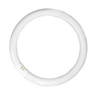 Osram 32w T9 Circular Fluoro Tube 6500K Daylight