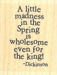 A Little Madness, Wood Mounted Rubber Stamp IMPRESSION OBSESSION - NEW, C14408