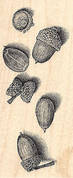 Acorns Wood Mounted Rubber Stamp IMPRESSION OBSESSION Nut Nuts Acorn New