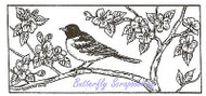 Bird Baltimore Oriole Branch Wood Mounted Rubber Stamp NORTHWOODS - O8427 New