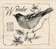 Bird Wonder Wood Mounted Rubber Stamp Susan Winget by Inkadinkado NEW