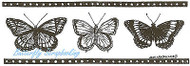 Butterfly Filmstrip Border Wood Mounted Rubber Stamp Northwoods Rubber Stamp New