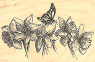 Butterfly with Daffodils Wood Mounted Rubber Stamp Impression Obsession New