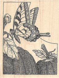 Butterfly With Pumpkins Wood Mounted Rubber Stamp IMPRESSION OBSESSION Fall New