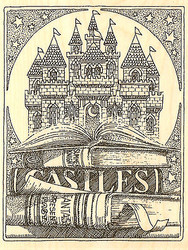 Castle Books Scene Wood Mounted Rubber Stamp Impression Obsession H1820 NEW