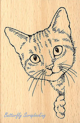 CAT Feline Curious Wood Mounted Rubber Stamp STAMPENDOUS Stamp P243 New