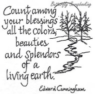 Count Among Your Blessings Text, Wood Mounted Rubber Stamp New NORTHWOODS -M2440
