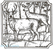 Deer Pair In Notched Square Frame, Wood Mounted Rubber Stamp NORTHWOODS - MM8841