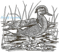 Duck Cinnamon Teal Waterfoul Wood Mounted Rubber Stamp NORTHWOODS - M6547 New
