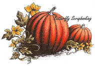 FALL PUMPKIN PATCH Cling Unmounted Rubber Stamp C.C. Designs JD1028 New