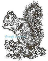 Fall Squirrel Tree Stump Wood Mounted Rubber Stamp Northwoods Rubber Stamp New