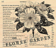 Flower Garden, Wood Mounted Rubber Stamp PENNY BLACK - NEW, 4242K