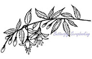 FUCHSIA Flower Branch Stamp Cling Unmounted Rubber Stamp MAGENTA C14642-L NEW