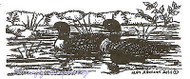 Loon Pair in Water Wood Mounted Rubber Stamp NORTHWOODS Rubber Stamp D9510 New