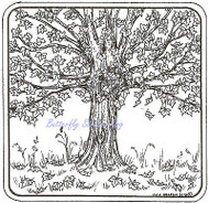 Maple Tree Square Wood Mounted Rubber Stamp Northwoods Rubber Stamp New