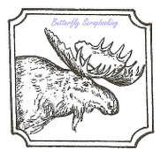 Moose Buck in Notched Square Wood Mounted Rubber Stamp NORTHWOODS - CC8535 New
