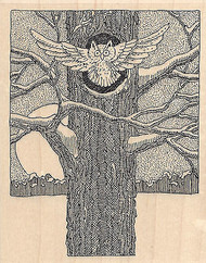Owl In Flight Wood Mounted Rubber Stamp IMPRESSION OBSESSION Owls Bird H1918 New
