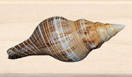 SEASHELL Photo Real Wood Mounted Rubber Stamp INKADINKADO NEW