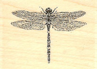 SMALL Dragonfly, Wood Mounted Rubber Stamp IMPRESSION OBSESSION - NEW, A1506