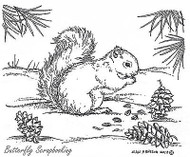 Squirrel With Pine Cones, Wood Mounted Rubber Stamp New NORTHWOODS - M7685