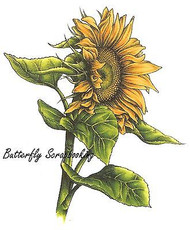 Sunflower Stamp Cling Unmounted Rubber Stamp C.C. Designs JD1010 New