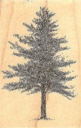 Wide Tree, Wood Mounted Rubber Stamp IMPRESSION OBSESSION - NEW, D1296