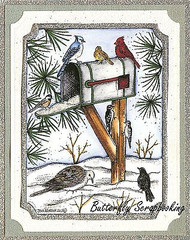WINTER SNOW Mailbox BIRDS Scene Wood Mounted Rubber Stamp NORTHWOODS P9863 New