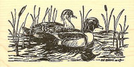 Wood Duck Pair In Cattails, Wood Mounted Rubber Stamp NORTHWOODS - NEW, O9731