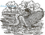 Wood Ducks Birds In Pond Wood Mounted Rubber Stamp Northwoods Rubber Stamp New