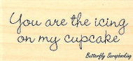 You Are The Icing, Wood Mounted Rubber Stamp IMPRESSION OBSESSION - NEW, B11025A