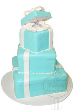 Engagement Cake 01