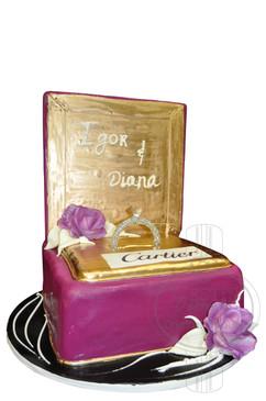 Engagement Cake 04