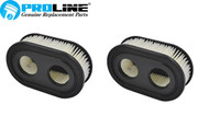 Proline® Air Filter For Briggs & Stratton 798452 593260 2 Pack  500 550 E EX SERIES