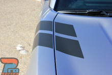 Dodge Charger Fender Stripes DOUBLE BAR 2011-2017 2018 2019 2020 2021