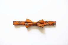 Paisley Bow Tie - Child
