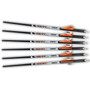 Ravin Premium .001 Arrows - 400 Grain