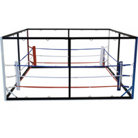 All In One Floor Boxing Ring