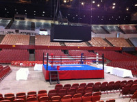 Professional Event Boxing Ring Official Size