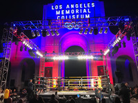 Pro Fight Night Boxing Ring