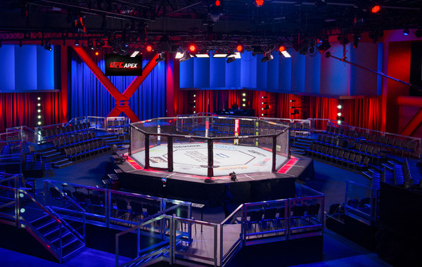 PRO MMA Professional Octagon Cages