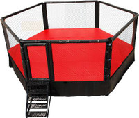 MMA Fighting Ring Daily Rental
